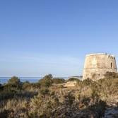 Torre des Pi des Català. Fotografies de M. Castelló